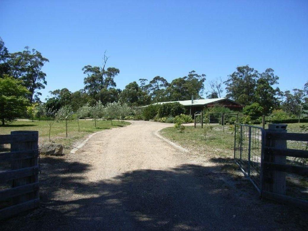 206 Simpsons Creek Road, ORBOST VIC 3888-1